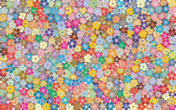 51.♪「世界に一つだけの花」♫ :コモンヒューマニティー